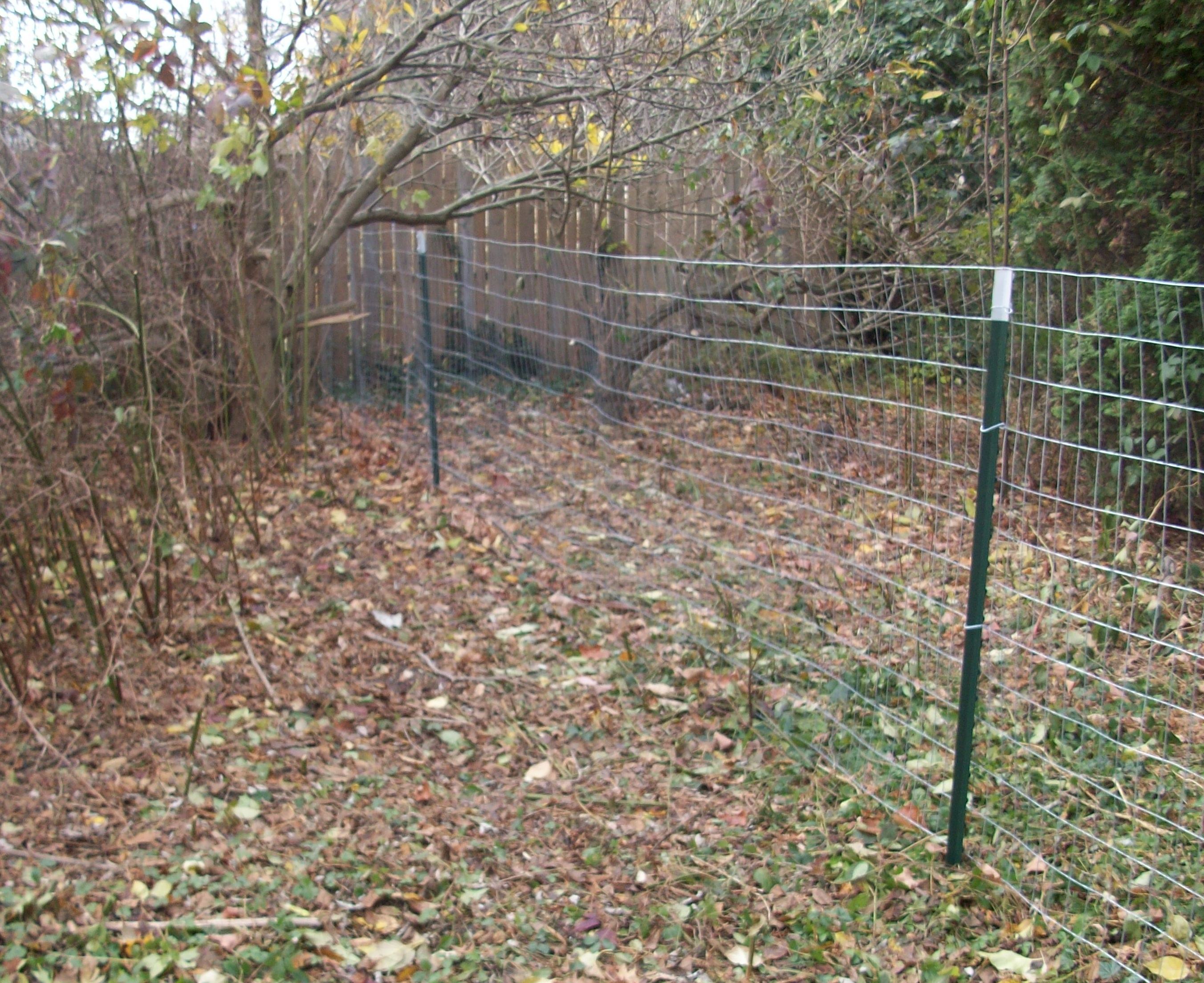 How to install welded wire fence fencing